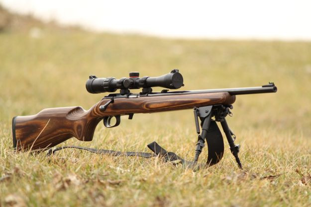 Ruger American Rimfire | 40 Best Rifles Perfect For Hunting Season | Gun Carrier
