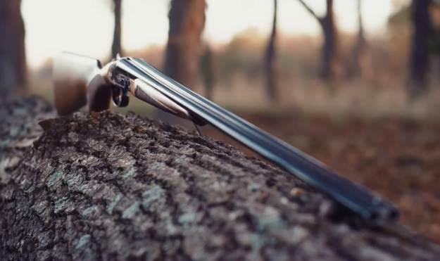 Pros and Cons | CZ Sharp-Tail | Gun Carrier Shotgun Reviews