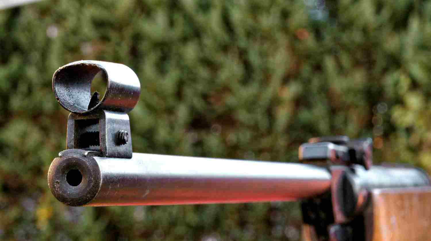 Feature | Pointing Rifle | Tips for Gun Sights | Co-Witnessing Your Sights
